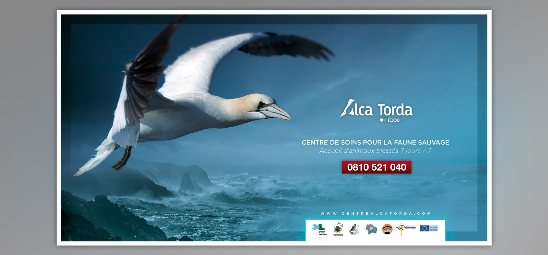 affiche_communication_alcatorda-1
