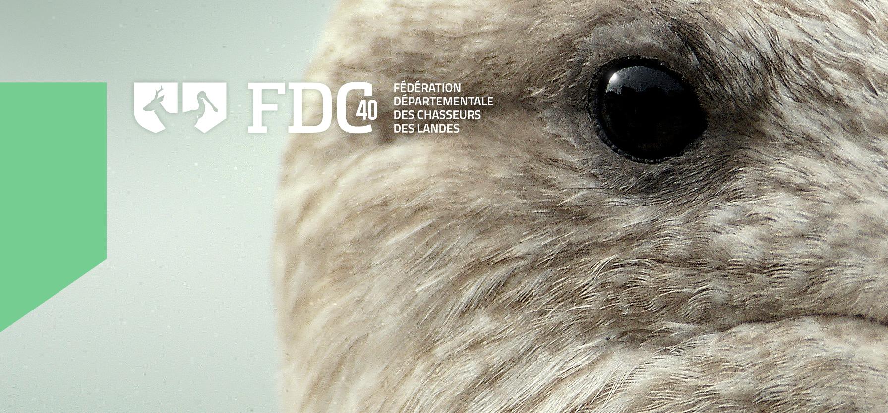 fdc40_identite_visuelle-01