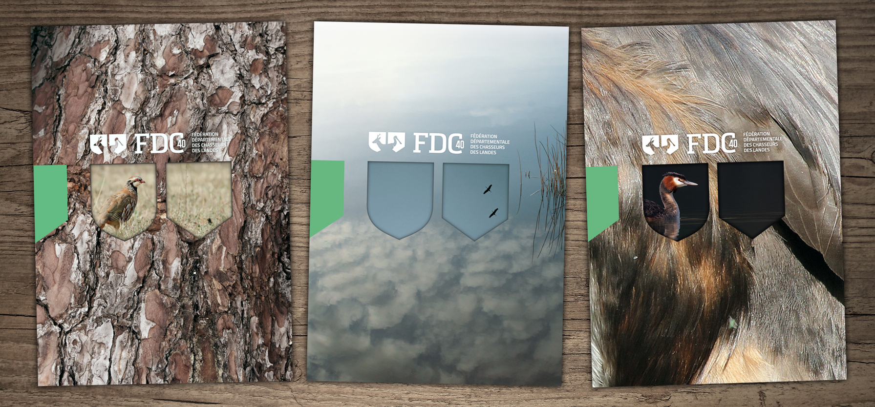 fdc40_identite_visuelle-04